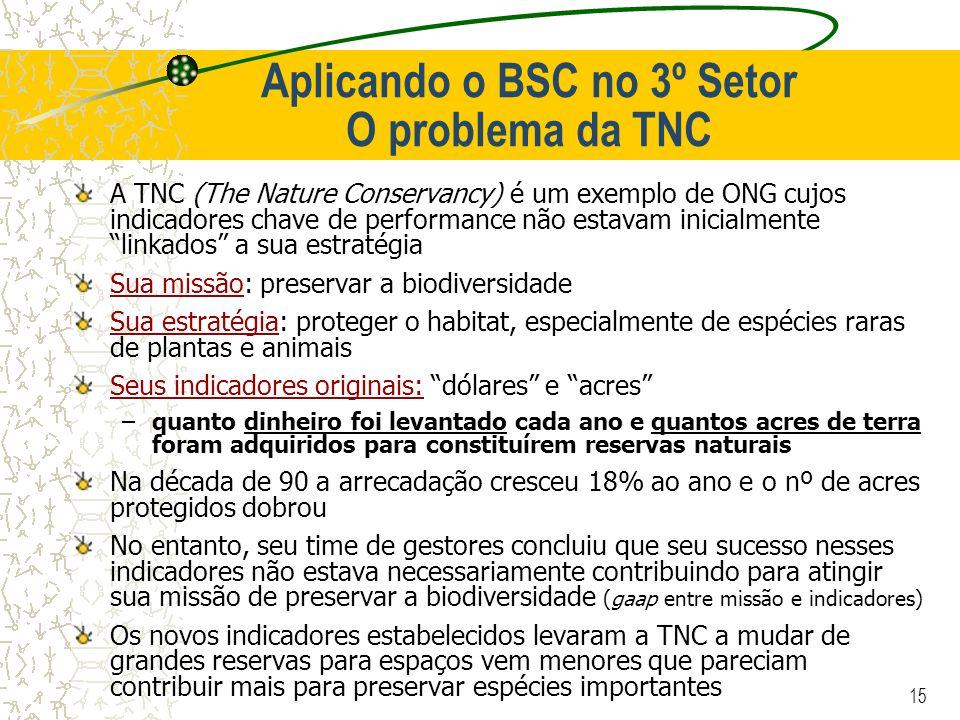 Aplicando o BSC no 3º Setor O problema da TNC