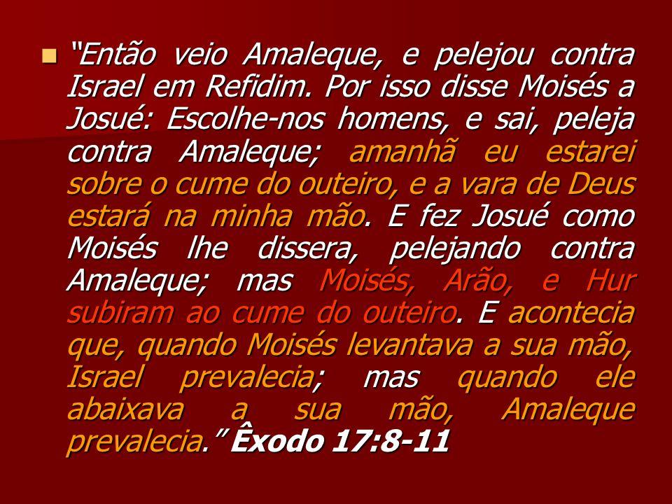 Então veio Amaleque, e pelejou contra Israel em Refidim