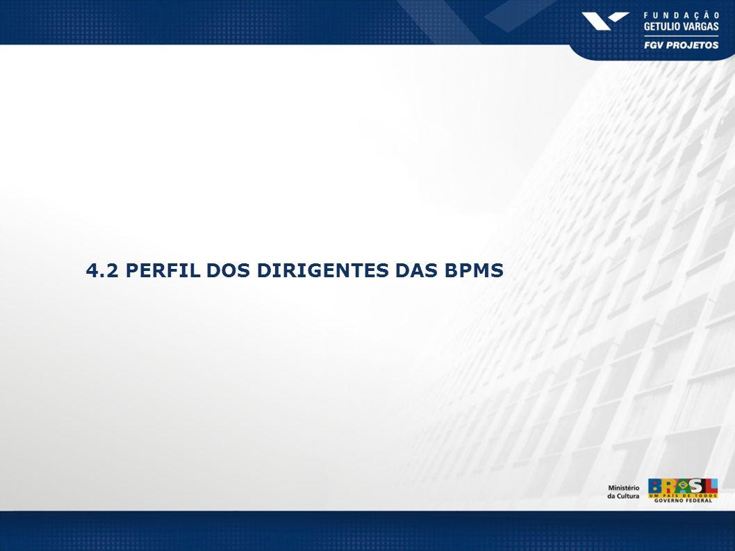 4.2 PERFIL DOS DIRIGENTES DAS BPMS