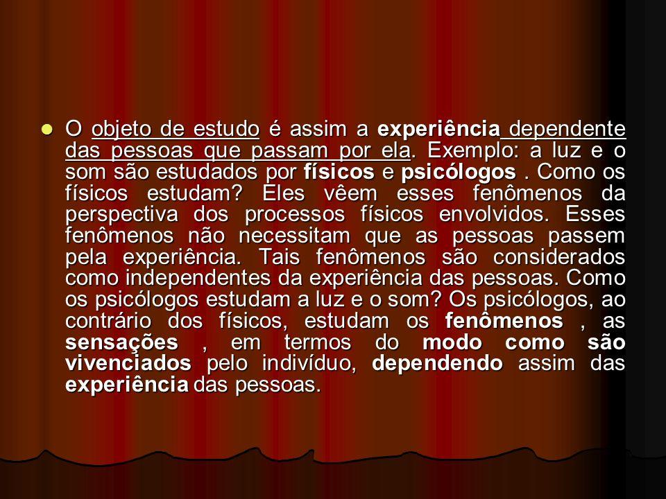 O objeto de estudo é assim a experiência dependente das pessoas que passam por ela.