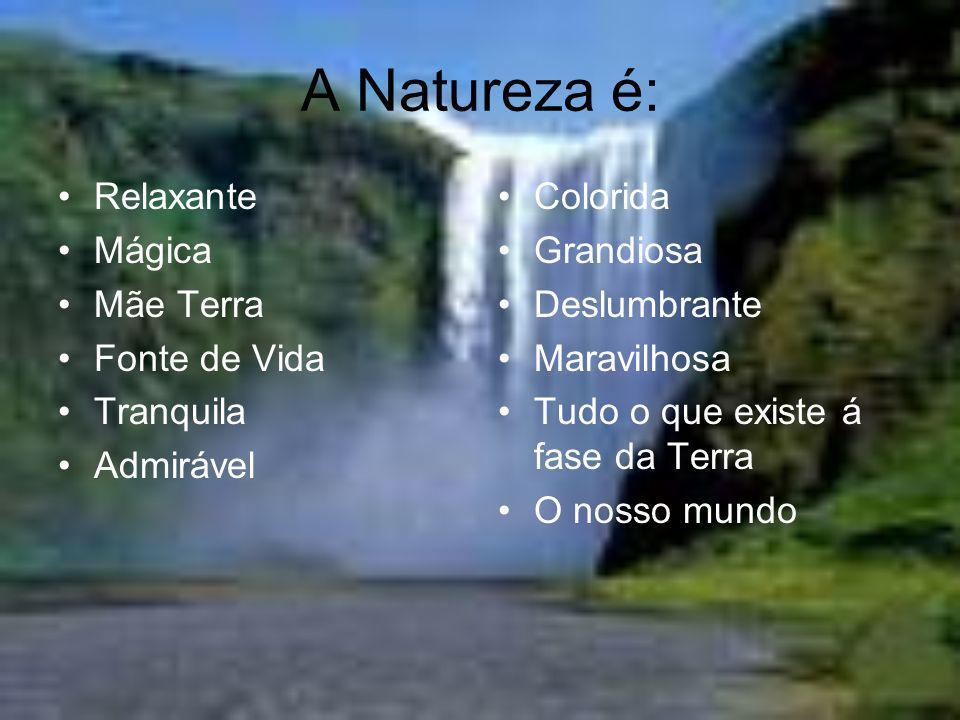 A Natureza é: Relaxante Mágica Mãe Terra Fonte de Vida Tranquila
