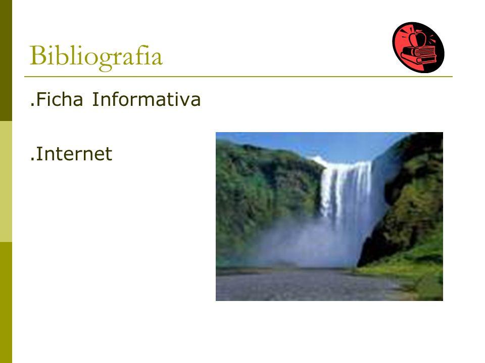Bibliografia .Ficha Informativa .Internet