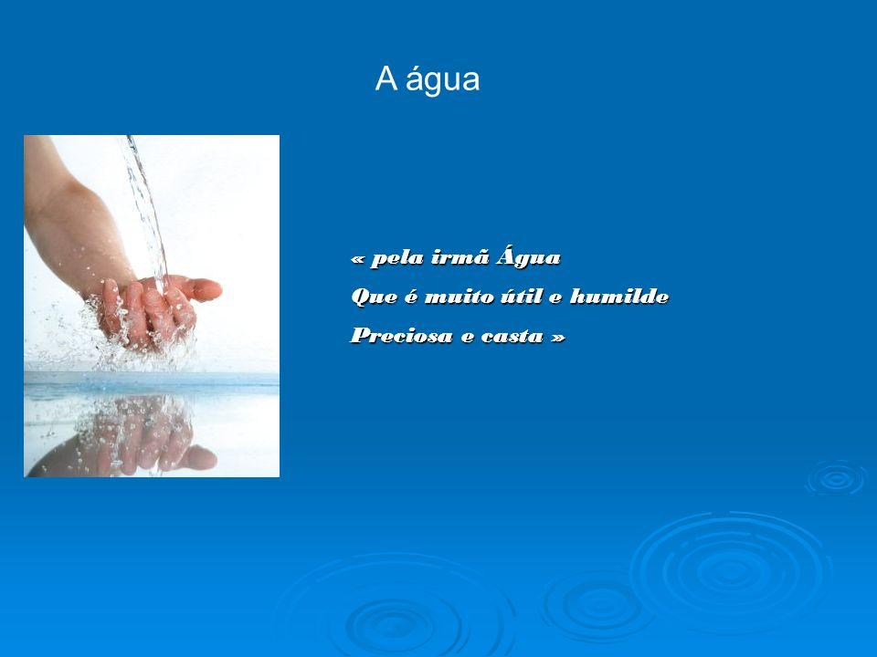 A água « pela irmã Água Que é muito útil e humilde Preciosa e casta »