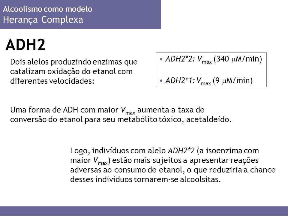 ADH2 Herança Complexa Alcoolismo como modelo ADH2*2: Vmax (340 M/min)