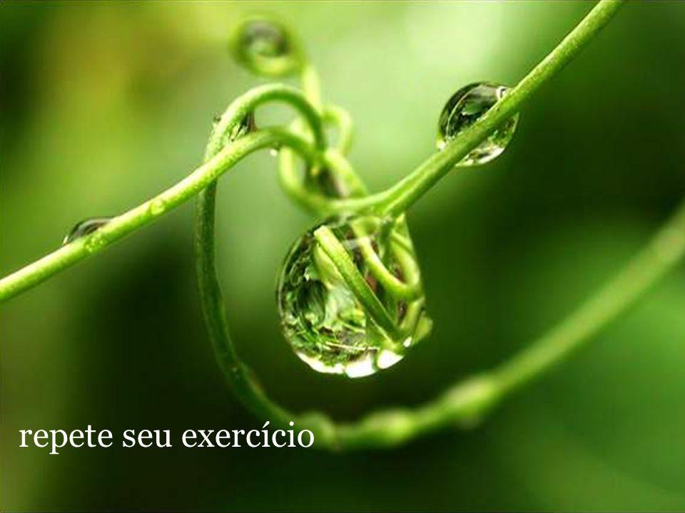 repete seu exercício