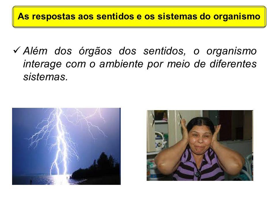As respostas aos sentidos e os sistemas do organismo