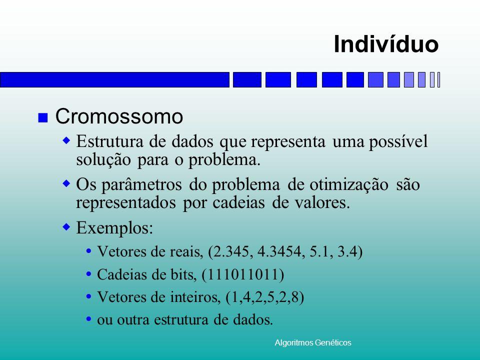 Indivíduo Cromossomo. Estrutura de dados que representa uma possível solução para o problema.
