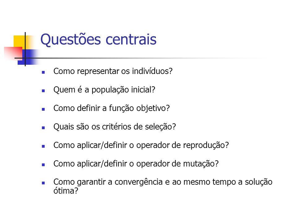 Questões centrais Como representar os indivíduos