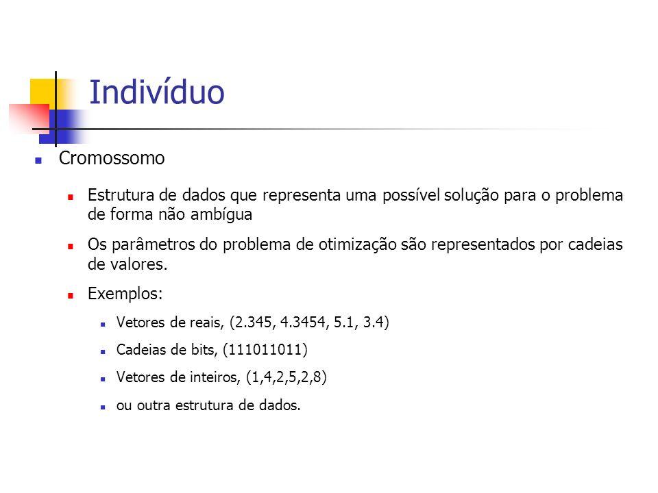 Indivíduo Cromossomo. Estrutura de dados que representa uma possível solução para o problema de forma não ambígua.