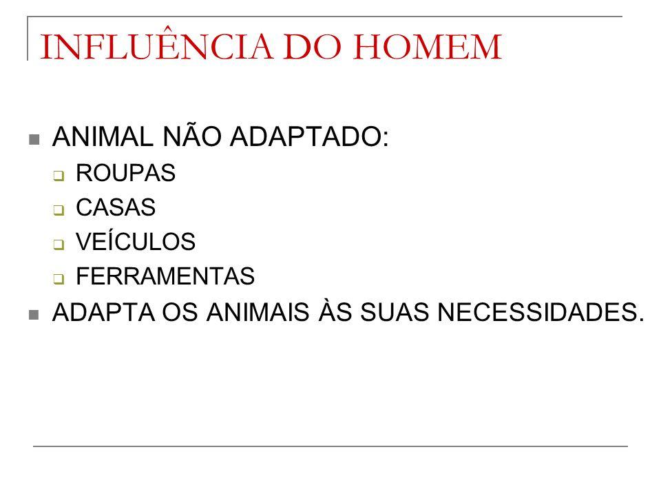 INFLUÊNCIA DO HOMEM ANIMAL NÃO ADAPTADO: