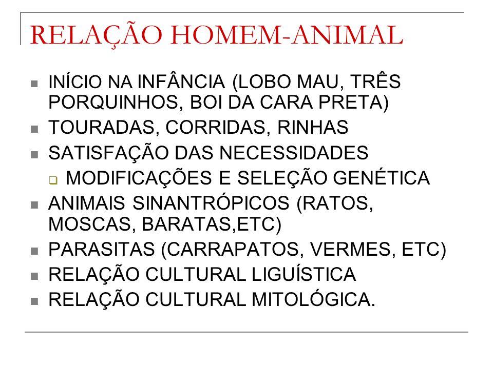 RELAÇÃO HOMEM-ANIMAL TOURADAS, CORRIDAS, RINHAS