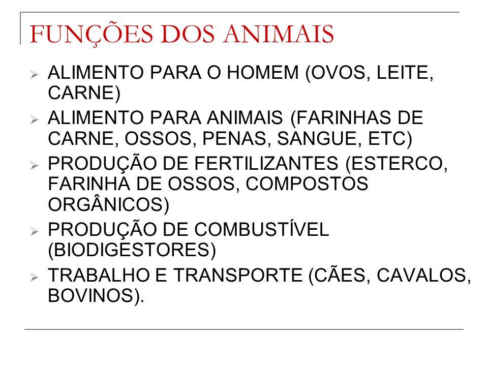 FUNÇÕES DOS ANIMAIS ALIMENTO PARA O HOMEM (OVOS, LEITE, CARNE)
