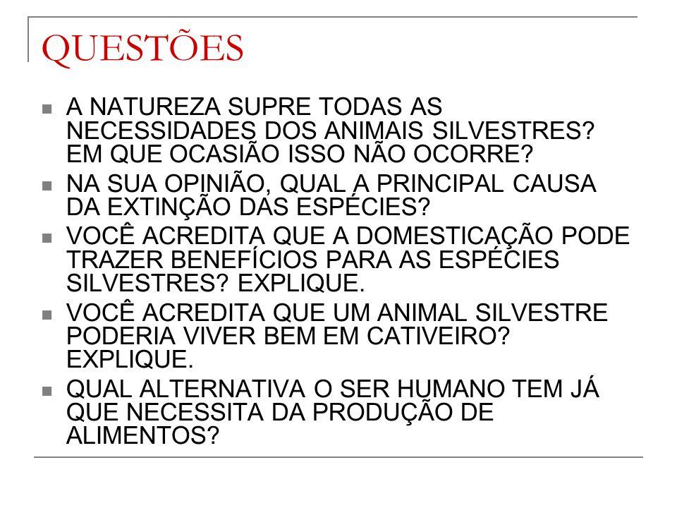 QUESTÕES A NATUREZA SUPRE TODAS AS NECESSIDADES DOS ANIMAIS SILVESTRES EM QUE OCASIÃO ISSO NÃO OCORRE