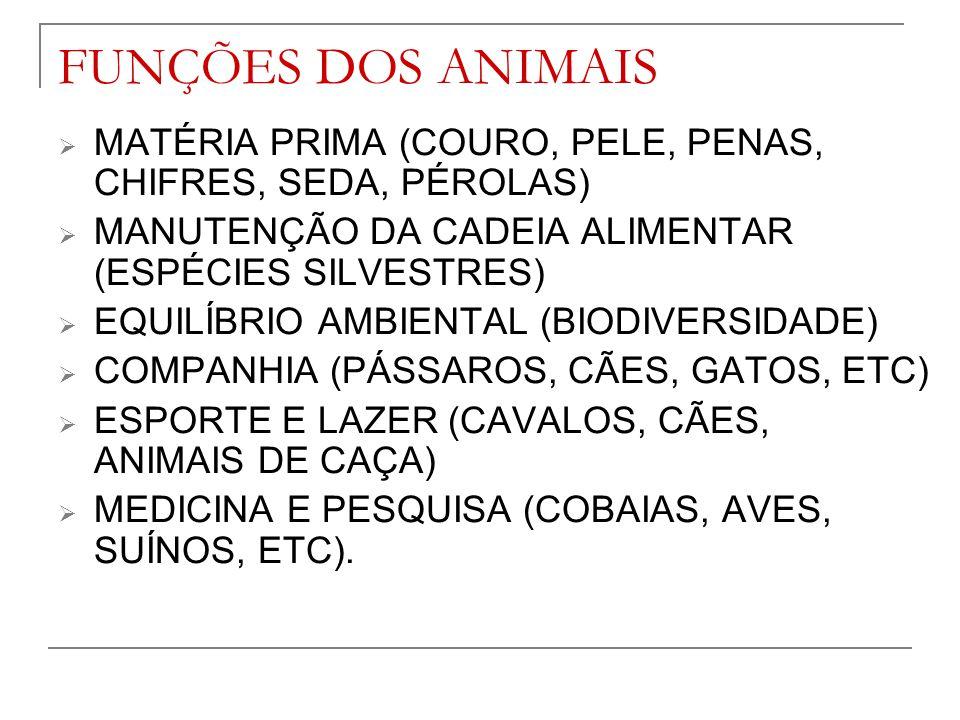 FUNÇÕES DOS ANIMAIS MATÉRIA PRIMA (COURO, PELE, PENAS, CHIFRES, SEDA, PÉROLAS) MANUTENÇÃO DA CADEIA ALIMENTAR (ESPÉCIES SILVESTRES)