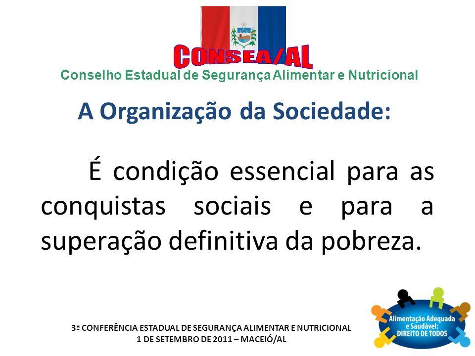 A Organização da Sociedade: