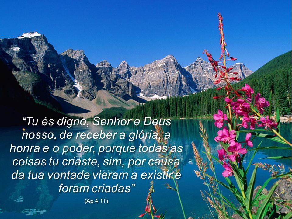 Tu és digno, Senhor e Deus nosso, de receber a glória, a honra e o poder, porque todas as coisas tu criaste, sim, por causa da tua vontade vieram a existir e foram criadas