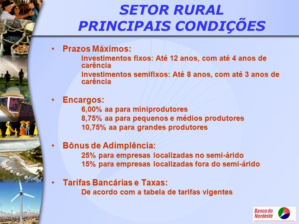 SETOR RURAL PRINCIPAIS CONDIÇÕES
