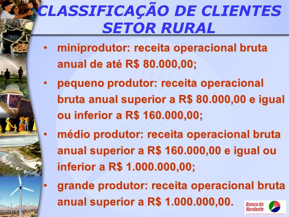 CLASSIFICAÇÃO DE CLIENTES SETOR RURAL