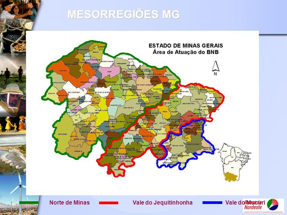 MESORREGIÕES MG Norte de Minas Vale do Jequitinhonha Vale do Mucuri