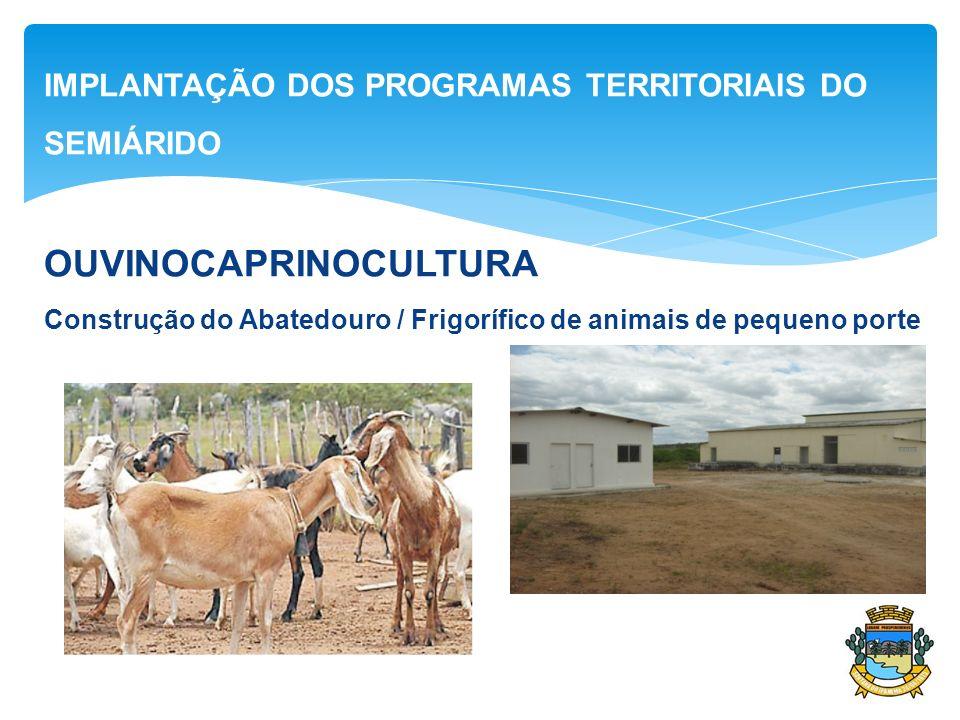 IMPLANTAÇÃO DOS PROGRAMAS TERRITORIAIS DO SEMIÁRIDO OUVINOCAPRINOCULTURA Construção do Abatedouro / Frigorífico de animais de pequeno porte