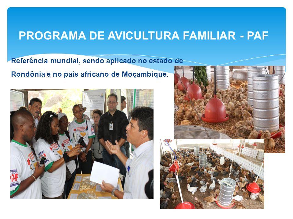 PROGRAMA DE AVICULTURA FAMILIAR - PAF