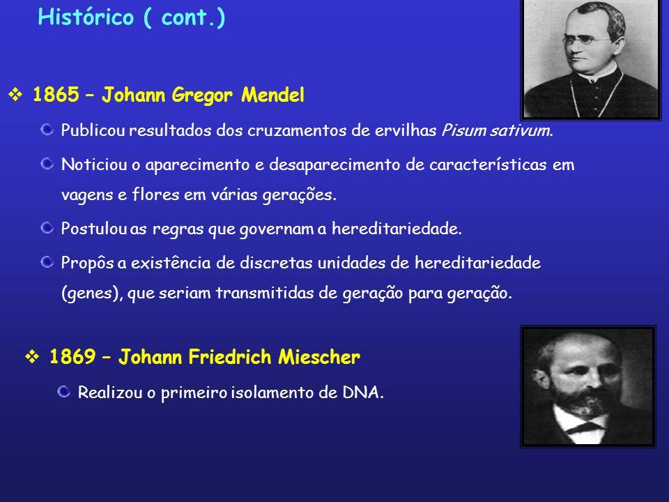 Histórico ( cont.) 1865 – Johann Gregor Mendel