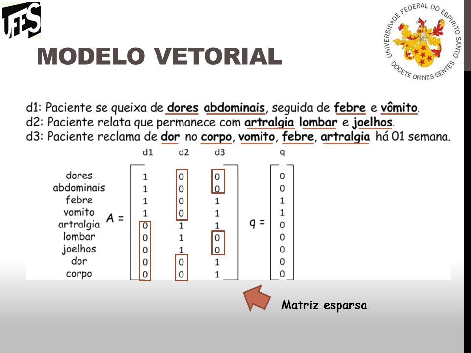 Modelo vetorial Matriz esparsa