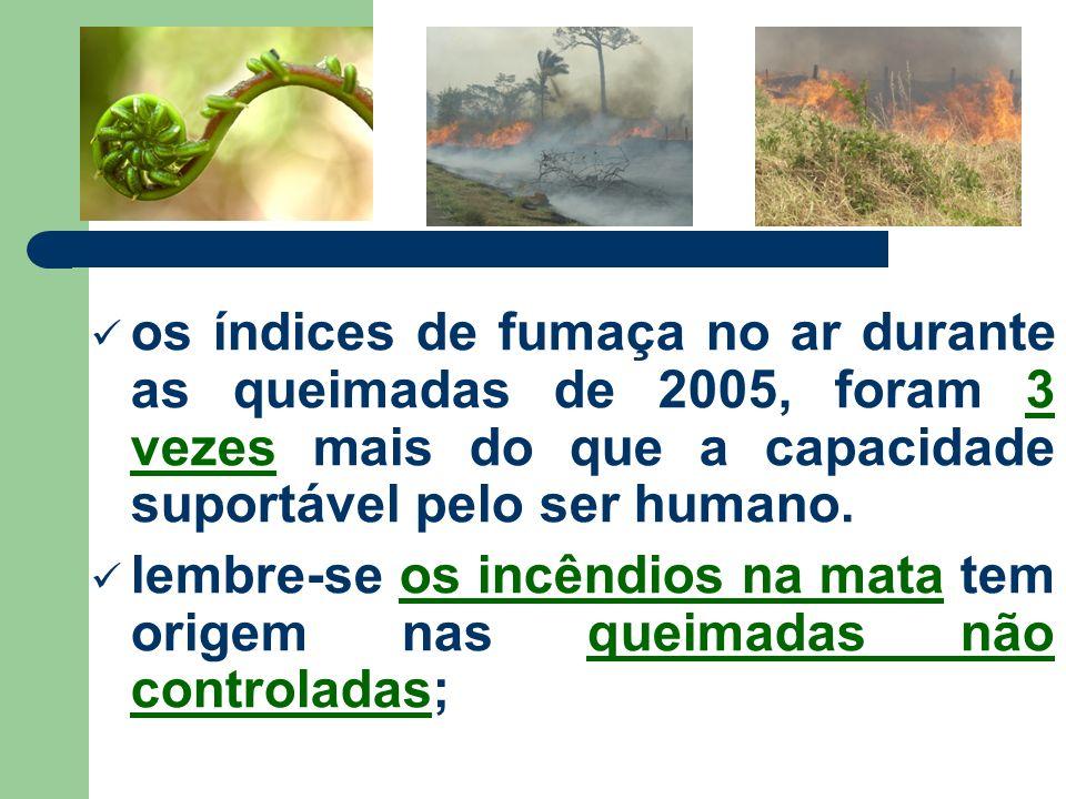 os índices de fumaça no ar durante as queimadas de 2005, foram 3 vezes mais do que a capacidade suportável pelo ser humano.