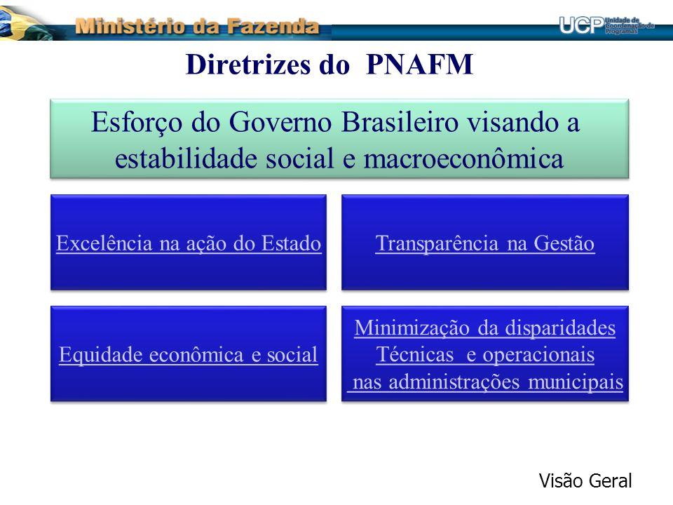 Esforço do Governo Brasileiro visando a