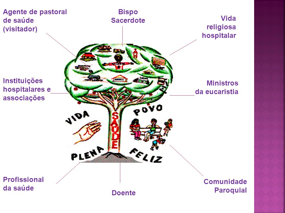 Agente de pastoral de saúde. (visitador) Bispo. Sacerdote. Vida religiosa hospitalar. Instituições hospitalares e associações.
