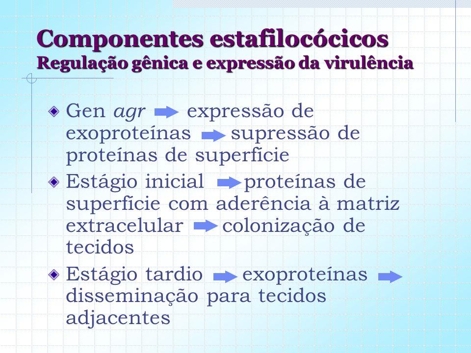 Componentes estafilocócicos Regulação gênica e expressão da virulência