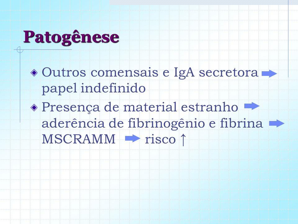 Patogênese Outros comensais e IgA secretora papel indefinido