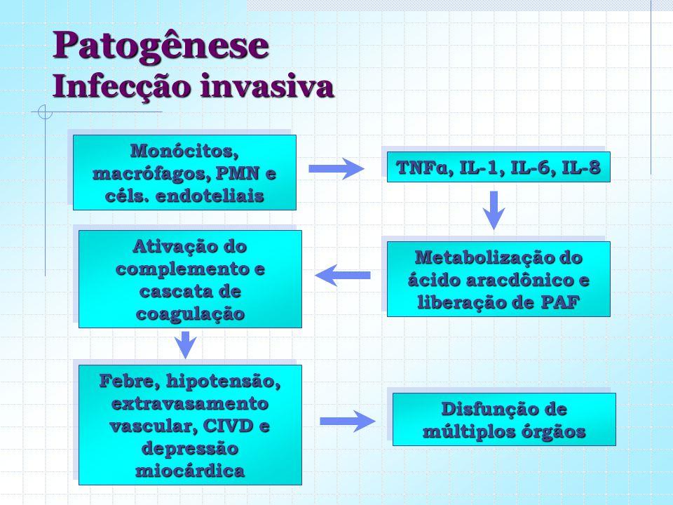 Patogênese Infecção invasiva