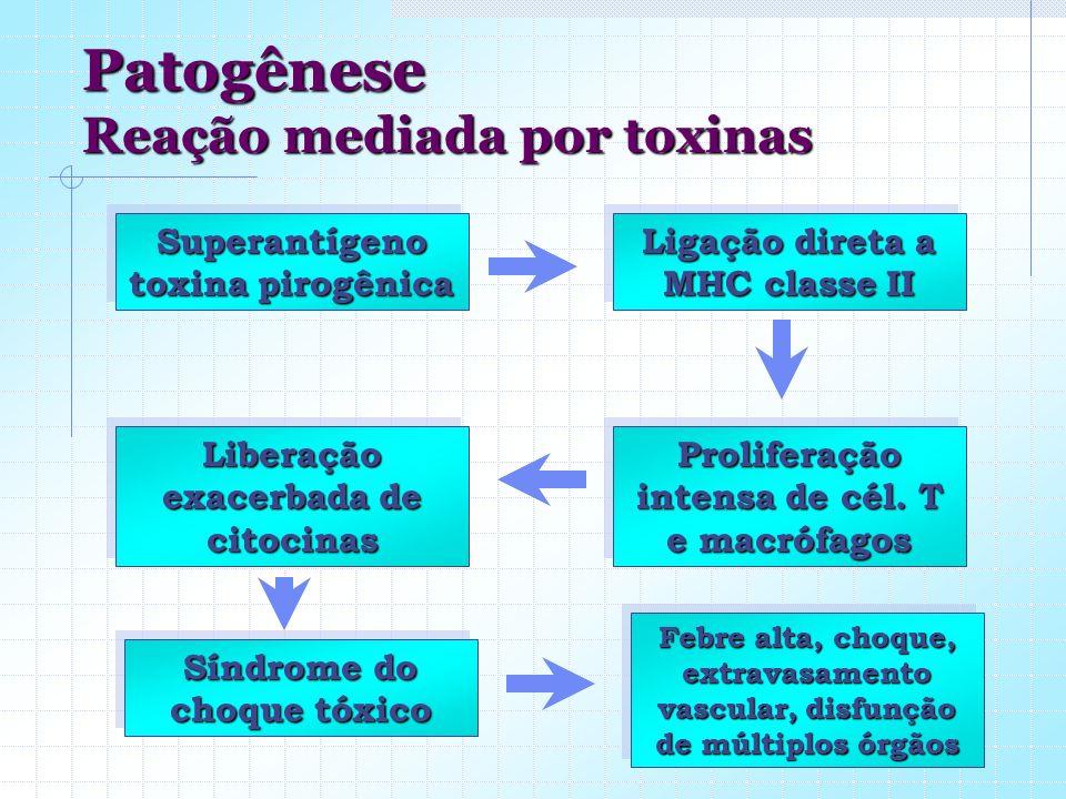 Patogênese Reação mediada por toxinas