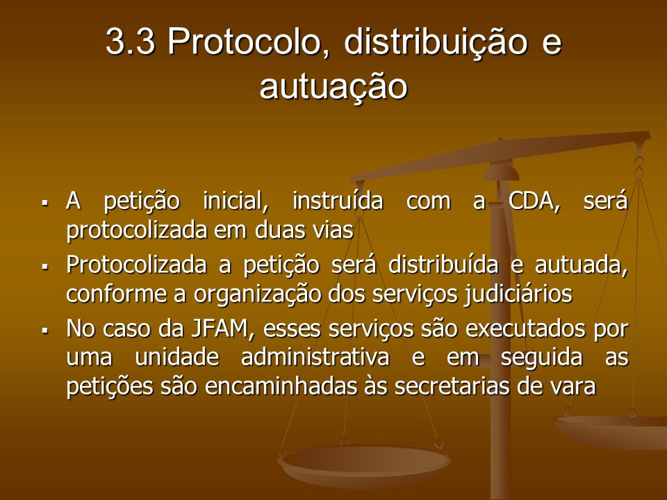 3.3 Protocolo, distribuição e autuação