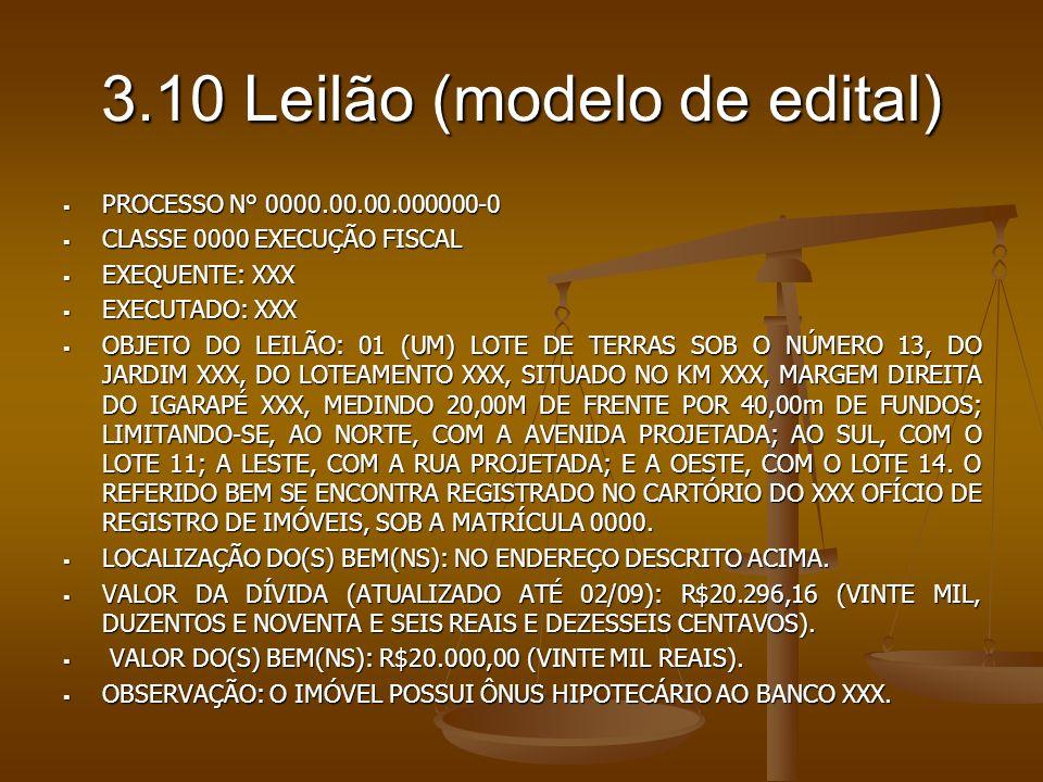 3.10 Leilão (modelo de edital)