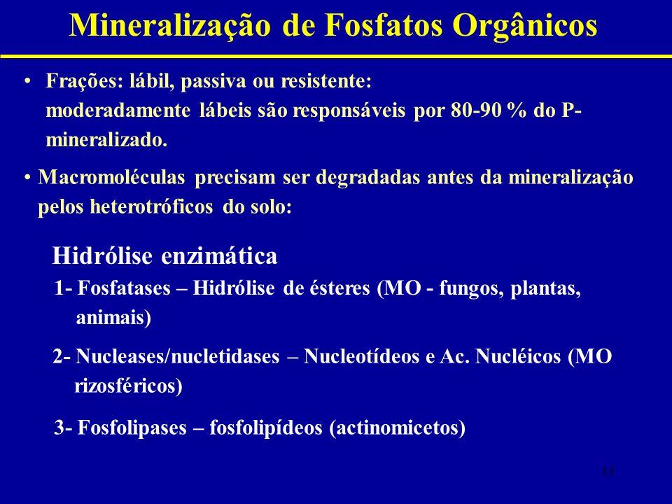 Mineralização de Fosfatos Orgânicos