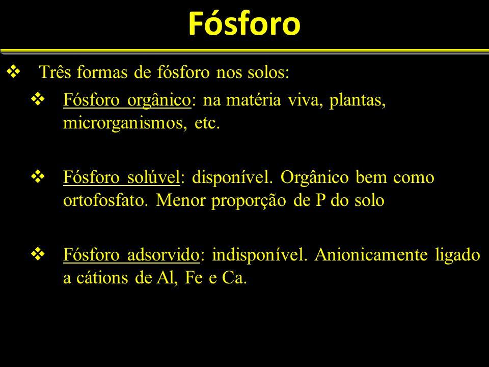 Fósforo Três formas de fósforo nos solos: