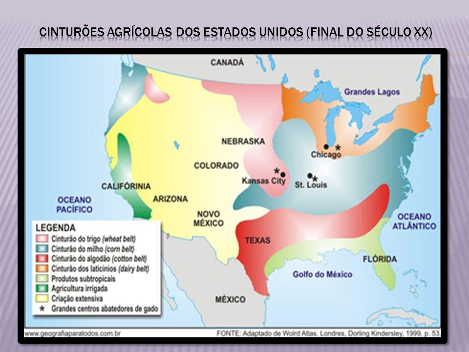 CINTURÕES AGRÍCOLAS DOS ESTADOS UNIDOS (FINAL DO SÉCULO XX)