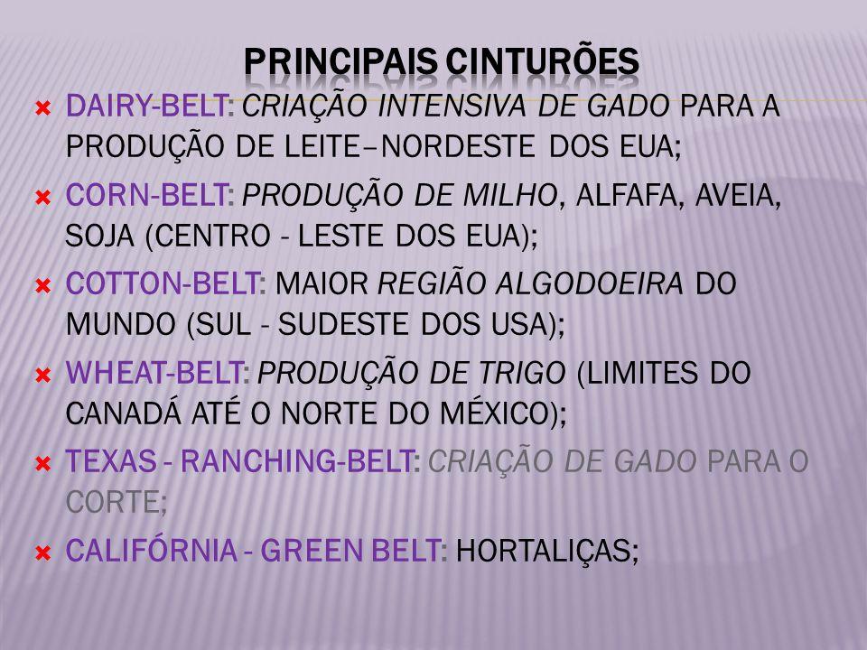 PRINCIPAIS CINTURÕES DAIRY-BELT: CRIAÇÃO INTENSIVA DE GADO PARA A PRODUÇÃO DE LEITE–NORDESTE DOS EUA;
