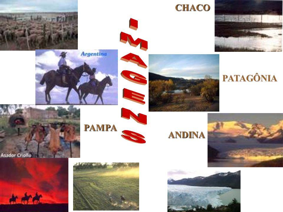 CHACO IMAGENS PATAGÔNIA PAMPA ANDINA