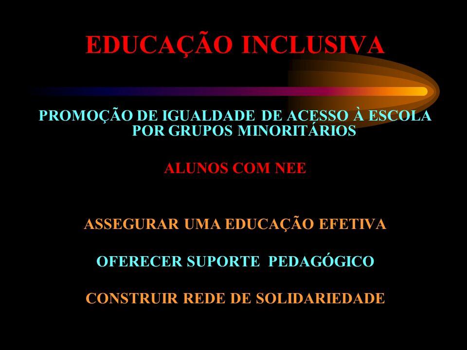 EDUCAÇÃO INCLUSIVAPROMOÇÃO DE IGUALDADE DE ACESSO À ESCOLA POR GRUPOS MINORITÁRIOS. ALUNOS COM NEE.