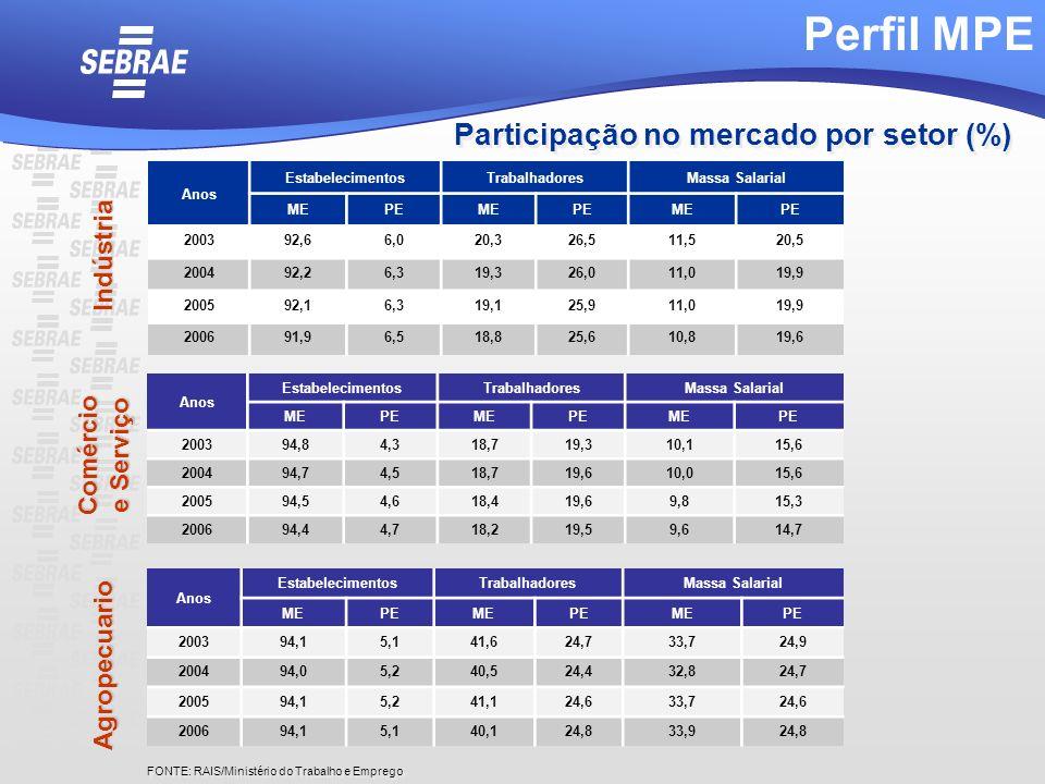 Perfil MPE Participação no mercado por setor (%) Indústria