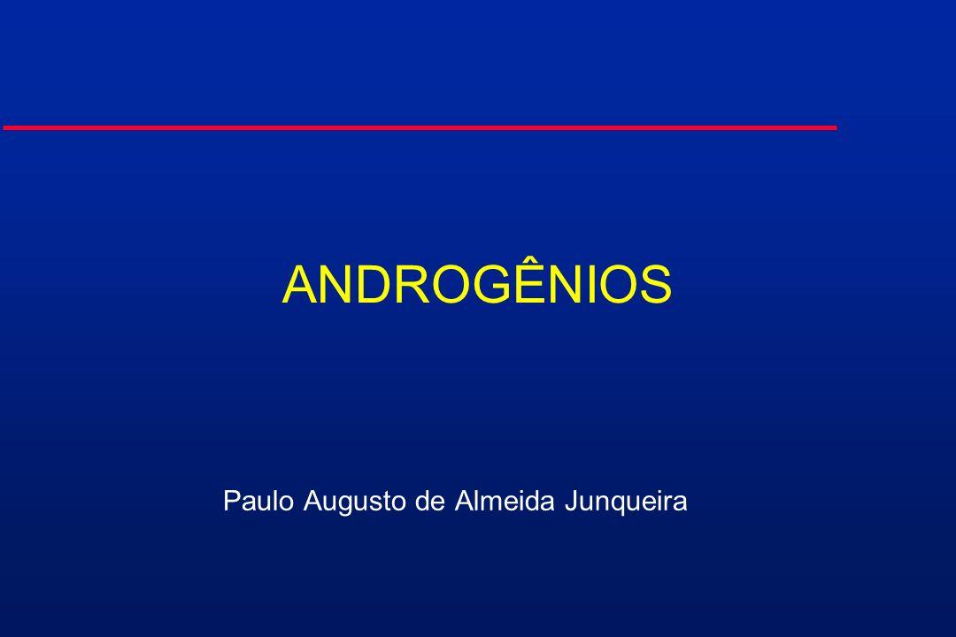 Paulo Augusto de Almeida Junqueira