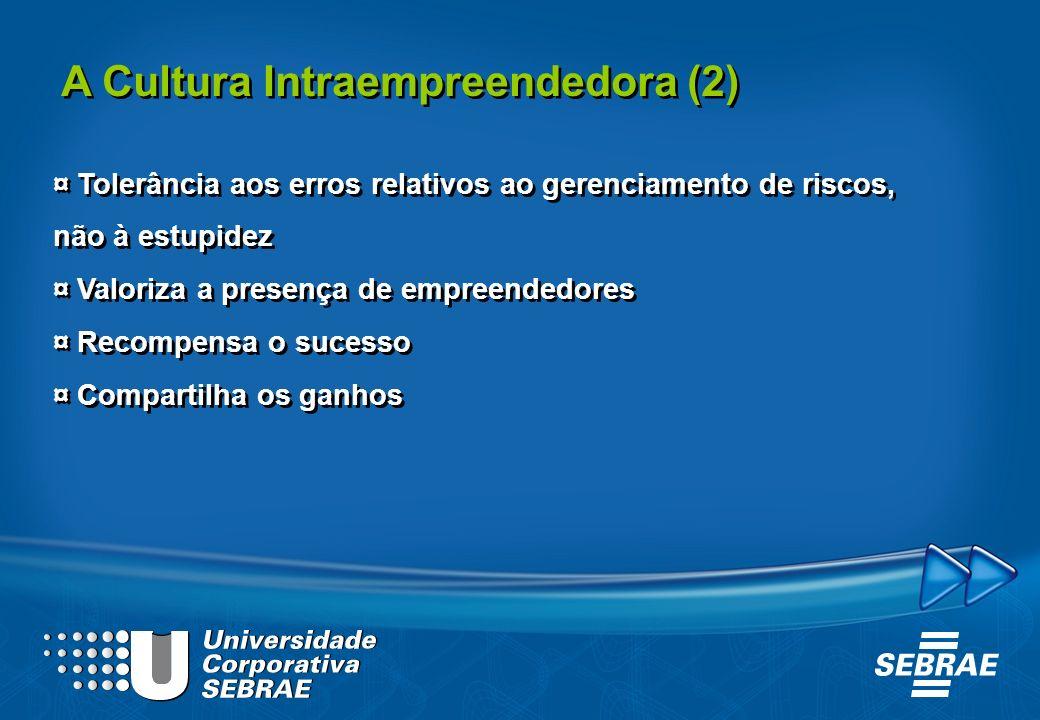 A Cultura Intraempreendedora (2)