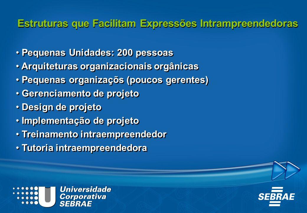 Estruturas que Facilitam Expressões Intrampreendedoras