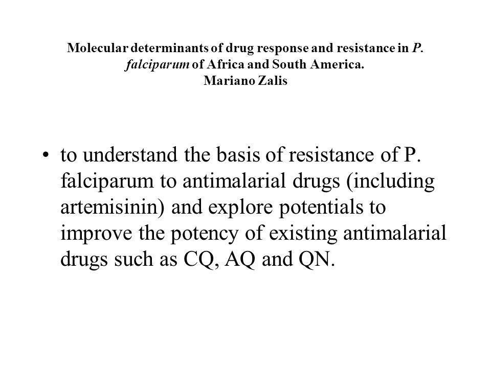 Molecular determinants of drug response and resistance in P