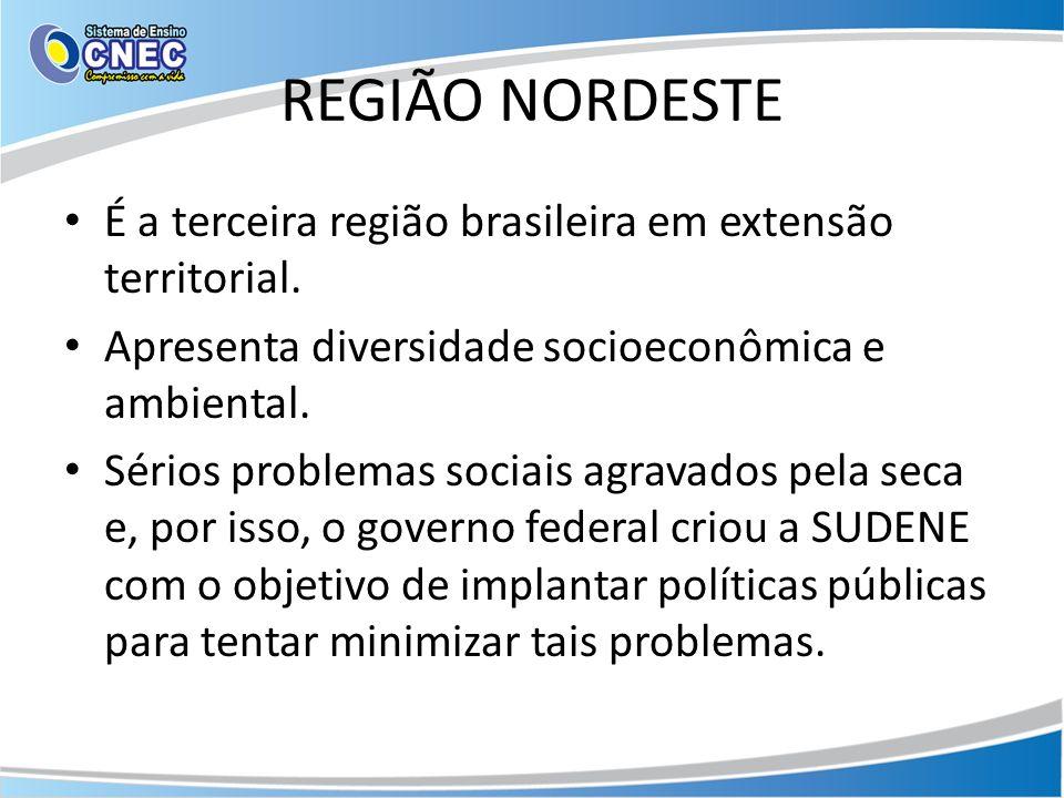 REGIÃO NORDESTE É a terceira região brasileira em extensão territorial. Apresenta diversidade socioeconômica e ambiental.