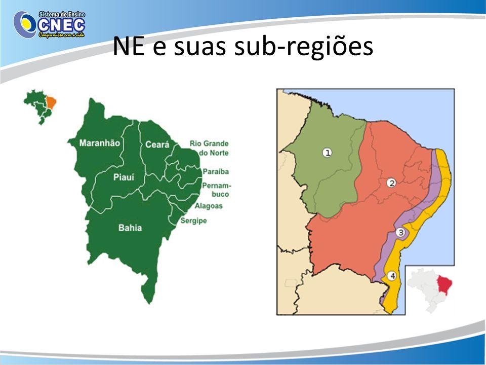 NE e suas sub-regiões