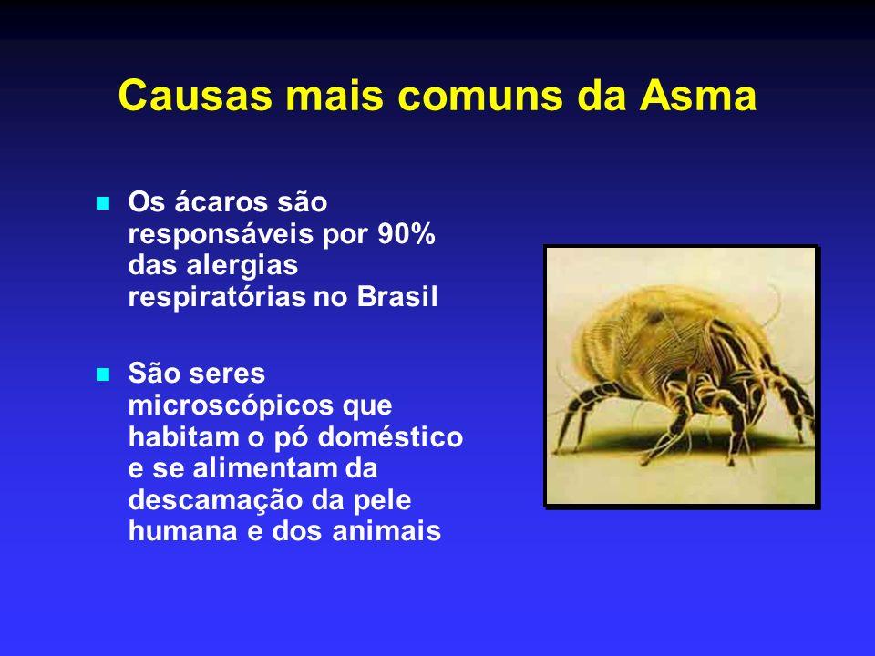 Causas mais comuns da Asma